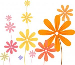 flower kosumosu